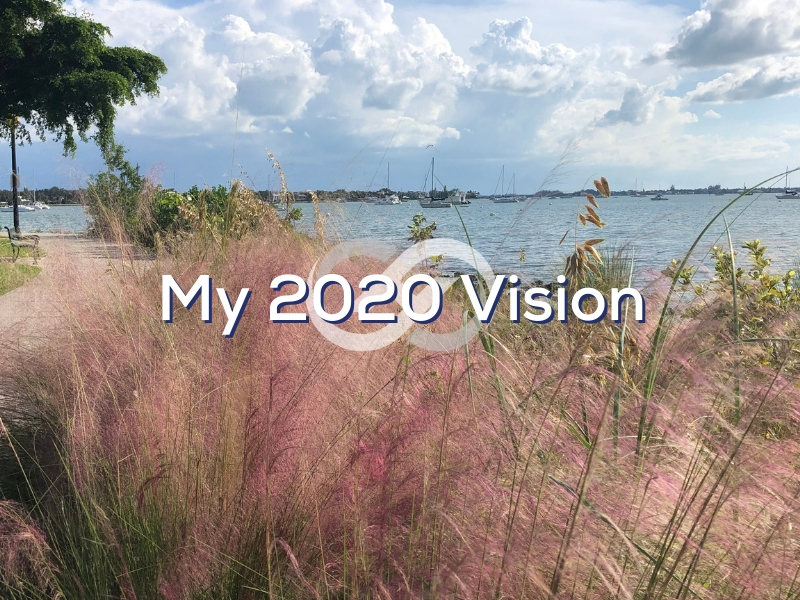 My 2020 Vision
